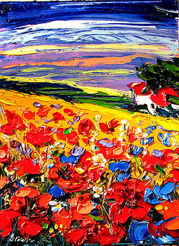 Poppies in the spring time.  by Maya Green