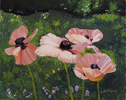 Lea Novak - Poppies in the Sun
