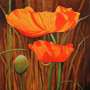 Poppies In The Wild by Linda Hiller
