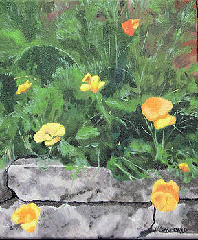 Poppies by Joan McGivney