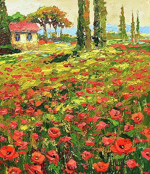 Poppies near the village by Dmitry Spiros
