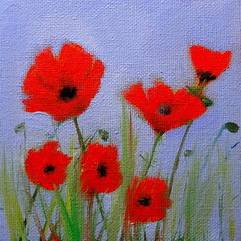 Poppies on Lavender background by Katy Hawk