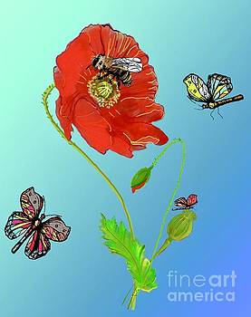 Poppies picture. by Birgit Schlegel