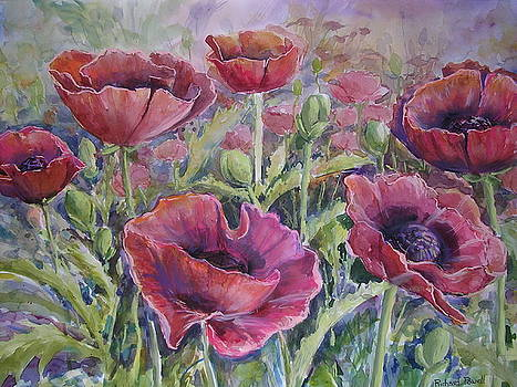 Poppies by Richard Powell