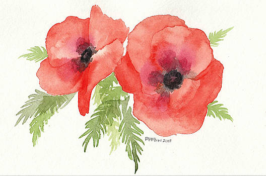 Poppies by Rowena Finn