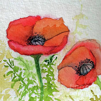 Poppies Sketch 2 by Donlyn Arbuthnot