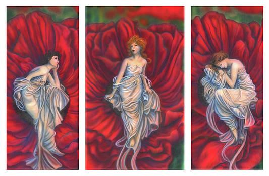 Poppies Tryptch by Wayne Pruse