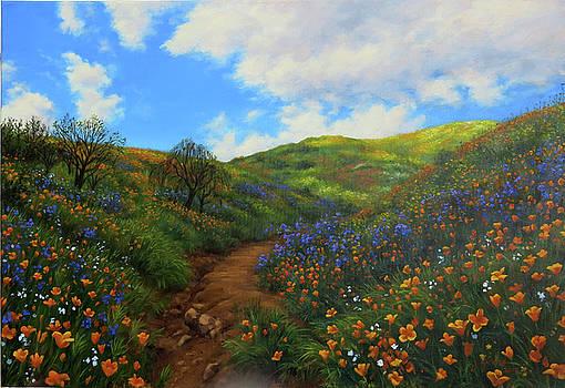 Poppies, Walker Canyon by Johanna Girard