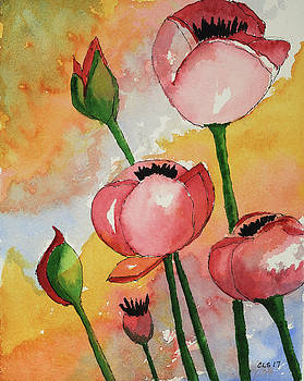 Poppin' Poppies by Cynthia Schoeppel