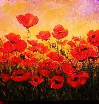 Poppin Poppies by Terry  Phillips