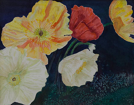 Popping Poppies by Connie Elste