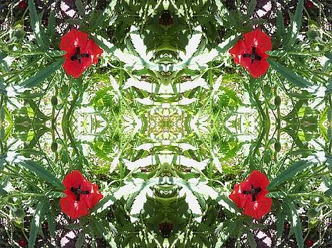 Poppy and Light Foliage Mandala by Julia Woodman