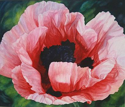 Poppy by Cherie Sikking