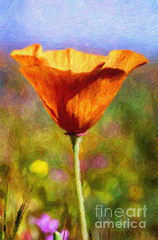Poppy Delight by Pam Vick