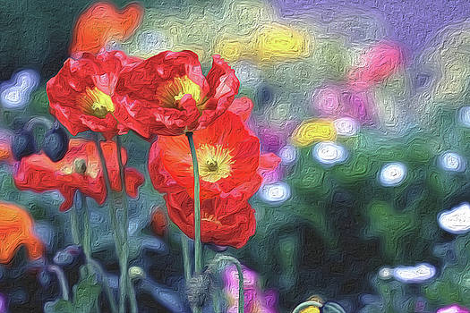 Poppy Delight by Vanessa Thomas