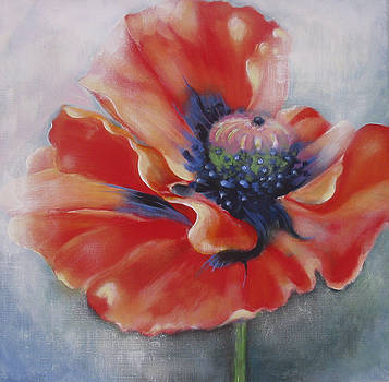 Poppy by Eve Corin