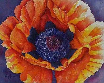 Poppy Exclamation by Barb Toland