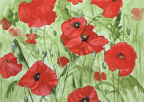 Poppy Field 1 by Jean Blackmer
