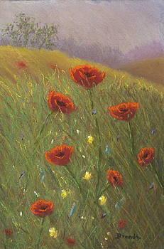 Poppy Field 2 by Brenda Maas