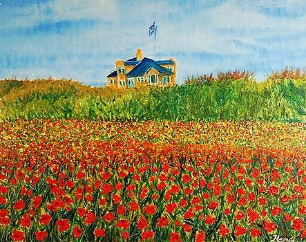 Poppy Field by Hema Sukumar
