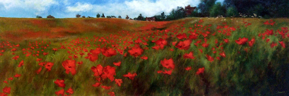 Poppy Field by Jennifer  Blenkinsopp
