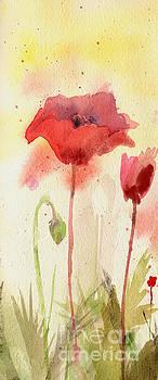 Poppy Field#1 by Sheila Golden