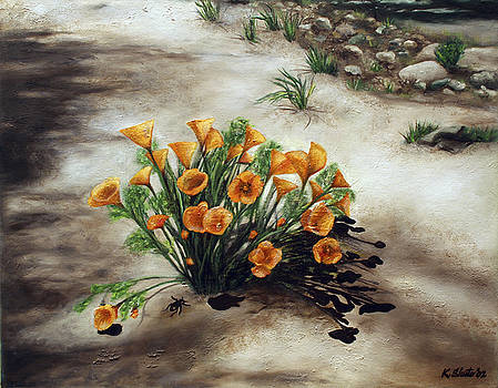 Poppy Oasis by Kathy Shute