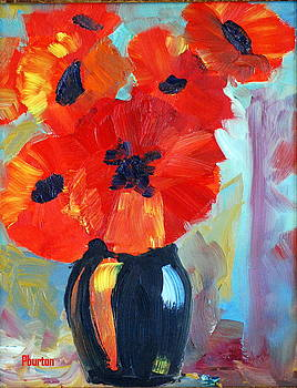 Poppy by Phil Burton