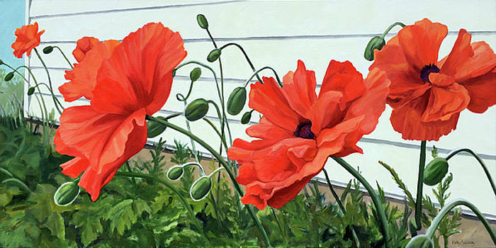 Poppy Row by Kathy Armstrong