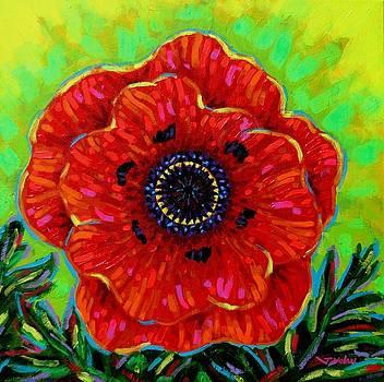 Poppy Solo by John  Nolan