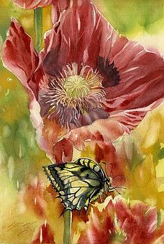 Alfred Ng - poppy with butterfly