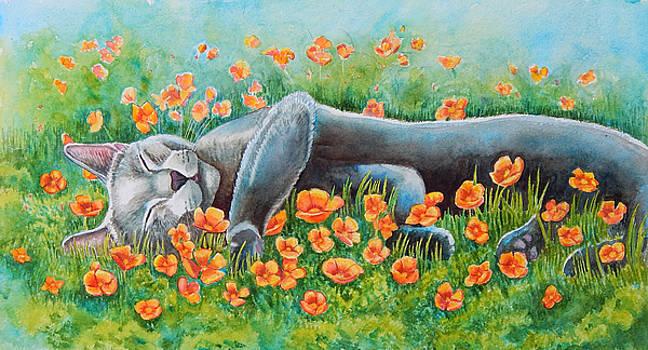 Poppy's Poppies Full Image by Rachel Armington