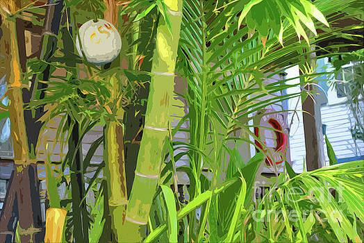 Jost Houk - Porch Palm