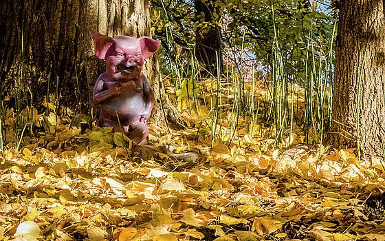 Porcine Pleasure by Albert Seger