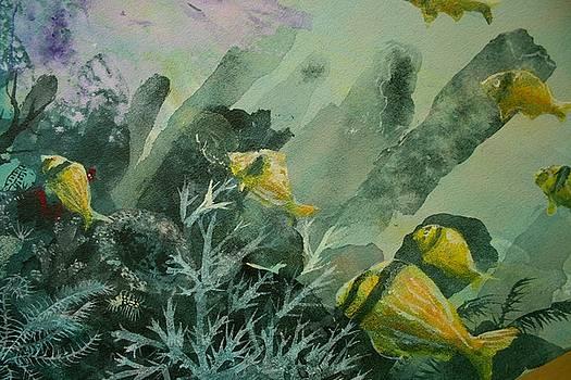 Pork fish and sea sponge by Ana Bikic