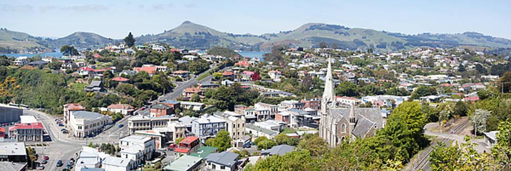 Ramunas Bruzas - Port Chalmers Panorama