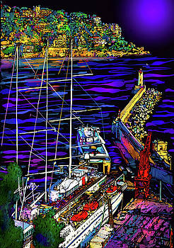Port in Nice, France by DC Langer