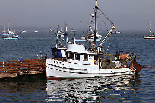 Art Block Collections - Port San Luis - The Lucy L