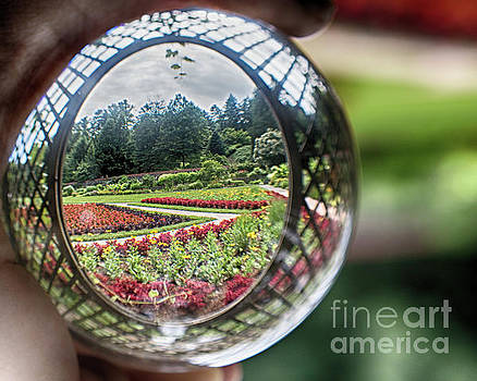 Portal into The Garden by Tom Gari Gallery-Three-Photography