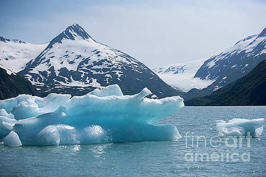 Chuck Kuhn - Porter Glacier Alaska II
