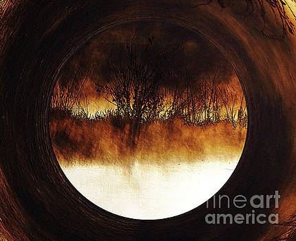 Porthole To Swamped Planet by Kim Pate