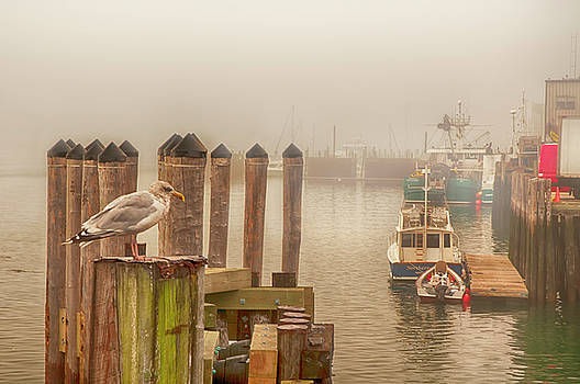 Portland Harbor by Mick Burkey