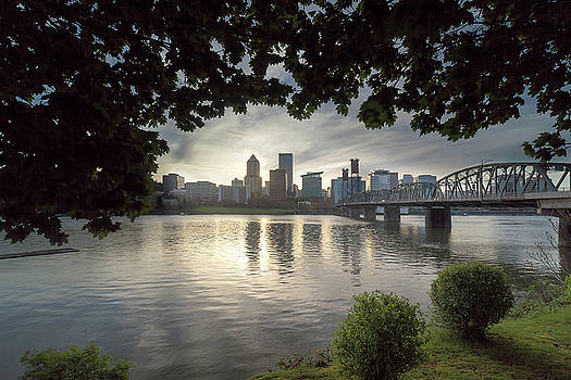 Portland Skyline Under the Trees at Sunset by David Gn