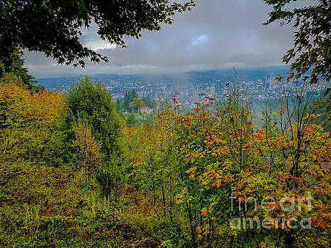 Jon Burch Photography - Portland View
