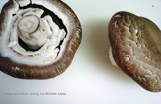 Portobello Mushrooms 2 by Jamey Balester