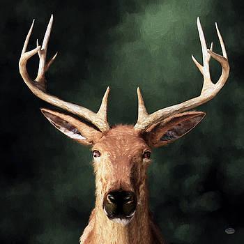 Daniel Eskridge - Portrait of a Buck