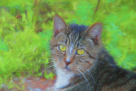 Portrait of a Gray Tabby 132 - Painting by Ericamaxine Price
