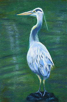 Portrait of a Heron by Nancy Ging