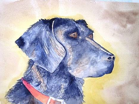 Portrait of a Labrador by Tara Bennett