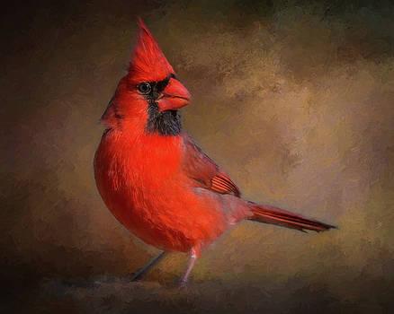 Portrait of a Male Cardinal by Jerry Deutsch